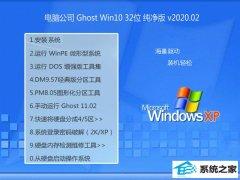 <strong>电脑公司Window10 v2020.02 32位 通用纯净版</strong>