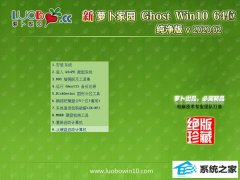 <strong>萝卜家园Ghost W10 64位 通用春节纯净版 v2020.02</strong>