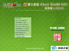 萝卜家园Window10 纯净纯净版64位 v2020.05